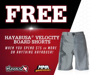Free Hayabusa Board Shorts - 300x250