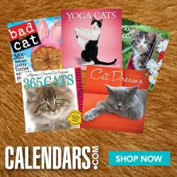 Shop the cutest cats at Calendars.com today!