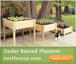 Cedar Raised Planters - Eartheasy.com