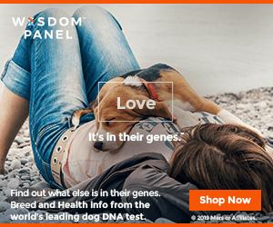Wisdom Panel® DNA Test 300x250