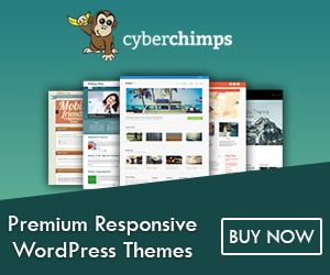 CyberChimps Themes