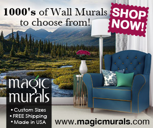 1000's of Wall Murals to choose from!