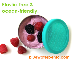 Blue Water Bento - Ocean-friendly bento lunch boxes by ECOlunchbox