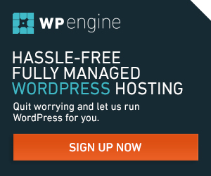 WP Engine Hassle-Free Managed WordPress Hosting