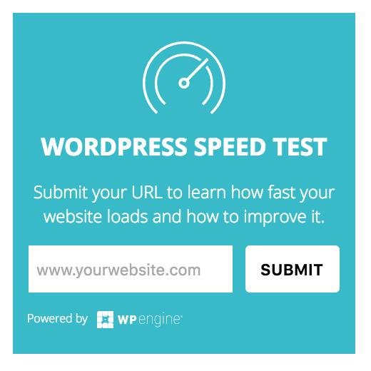 WordPress Speed Test for Website Optimization