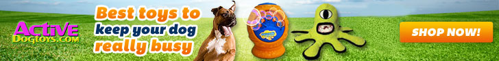 Best Toys for Active Dogs - ActiveDogToys.com
