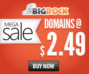 Mega domain sale