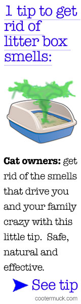 Litterbiotic Cat Litter Deodorizer - Buy Now