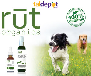 Organic Pet Supplements to Keep Your Dog Healthy and Happy
