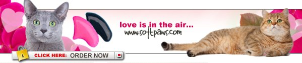Love is in the Air at Softpaws.com