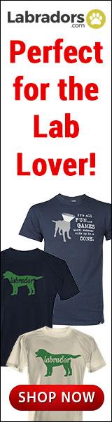 2015 Labradors.com Banners