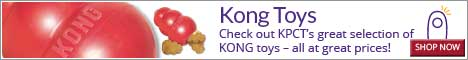 Check out KPCT's great selection of KONG toys - all at great prices!