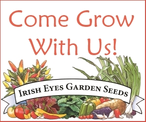 Irish Eyes Garden Seeds