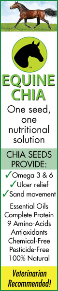Equine Chia for Healthy Horses