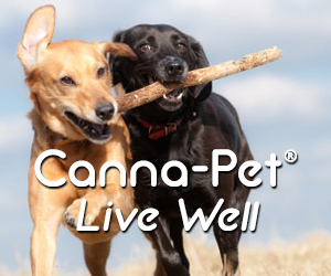 CBD Supplements for Dogs and Cats - Shop Now