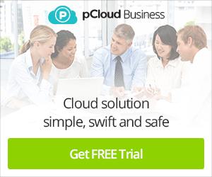 pCloud Business Lead