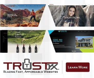 Trustdyx | fast, affordable websites