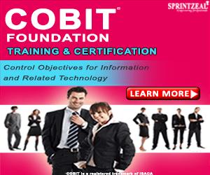 cobit foundation