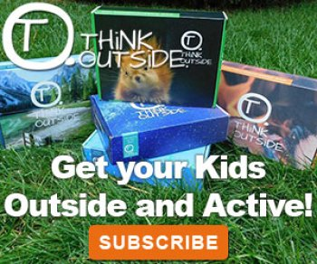 Subscribe at Think Outside Boxes