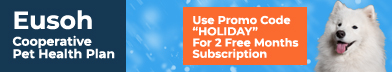 Eusoh promo code HOLIDAY