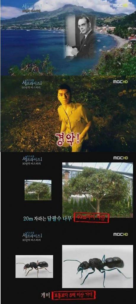MBC '서프라이즈' 방송화면 캡처