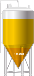 Image result for ビール 下面発酵