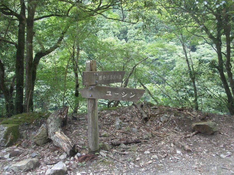 ユーシン渓谷と西丹沢県民の森への分岐点에 대한 이미지 검색결과