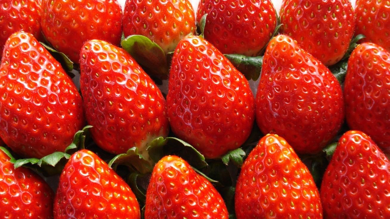 「イチゴ みかん」の画像検索結果