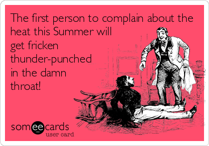 someecards.com - The first person to complain about the heat this Summer will get fricken thunder-punched in the damn throat!