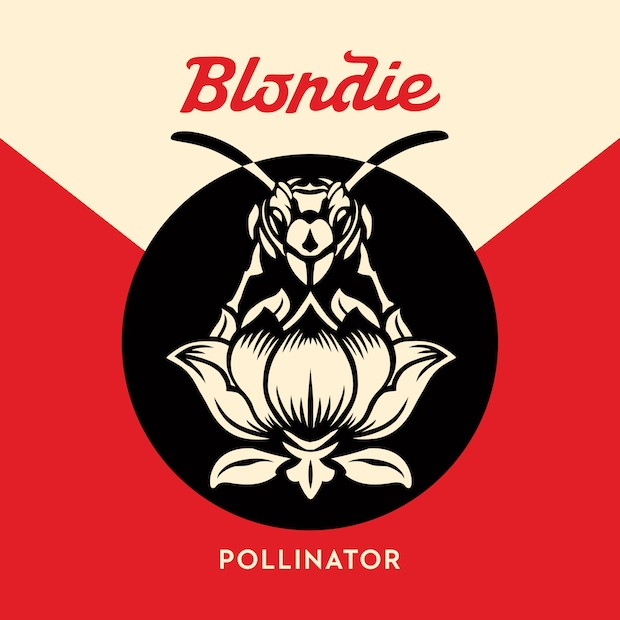 Image result for blondie pollinator