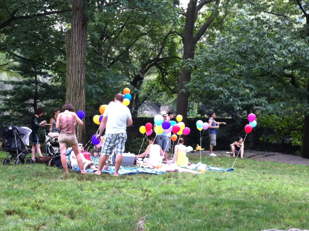 Summer Scene Central Park Annie Fitzsimmons