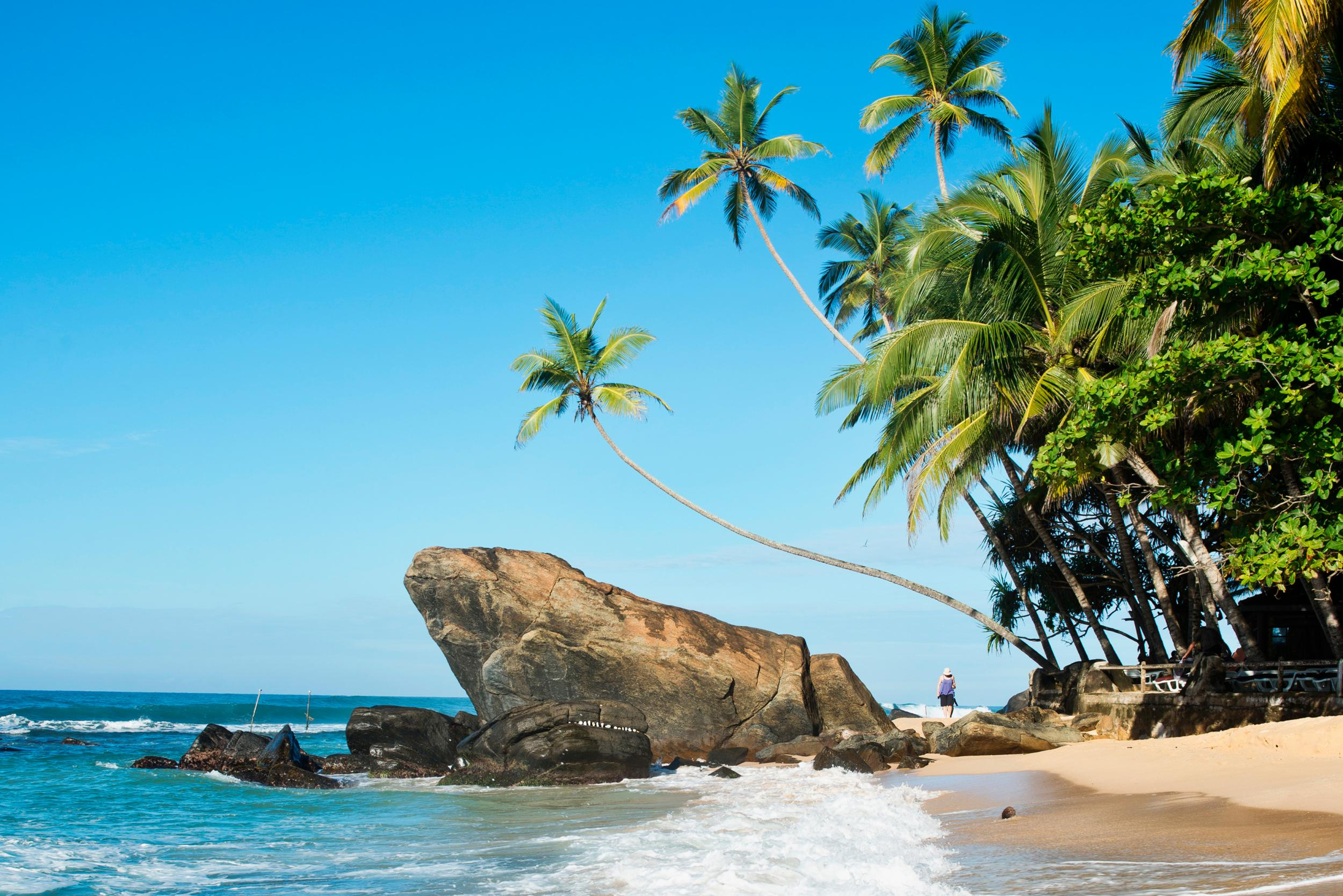 Sri Lanka Where To Eat Drink And Stay London Evening