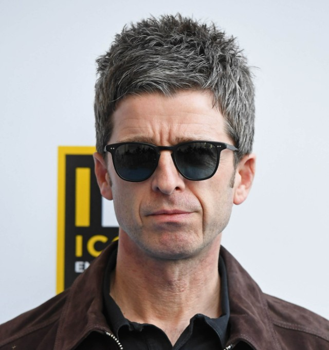 Noel Gallagher On Harry Styles Single My Cat Couldve
