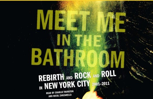Image result for meet me in the bathroom book
