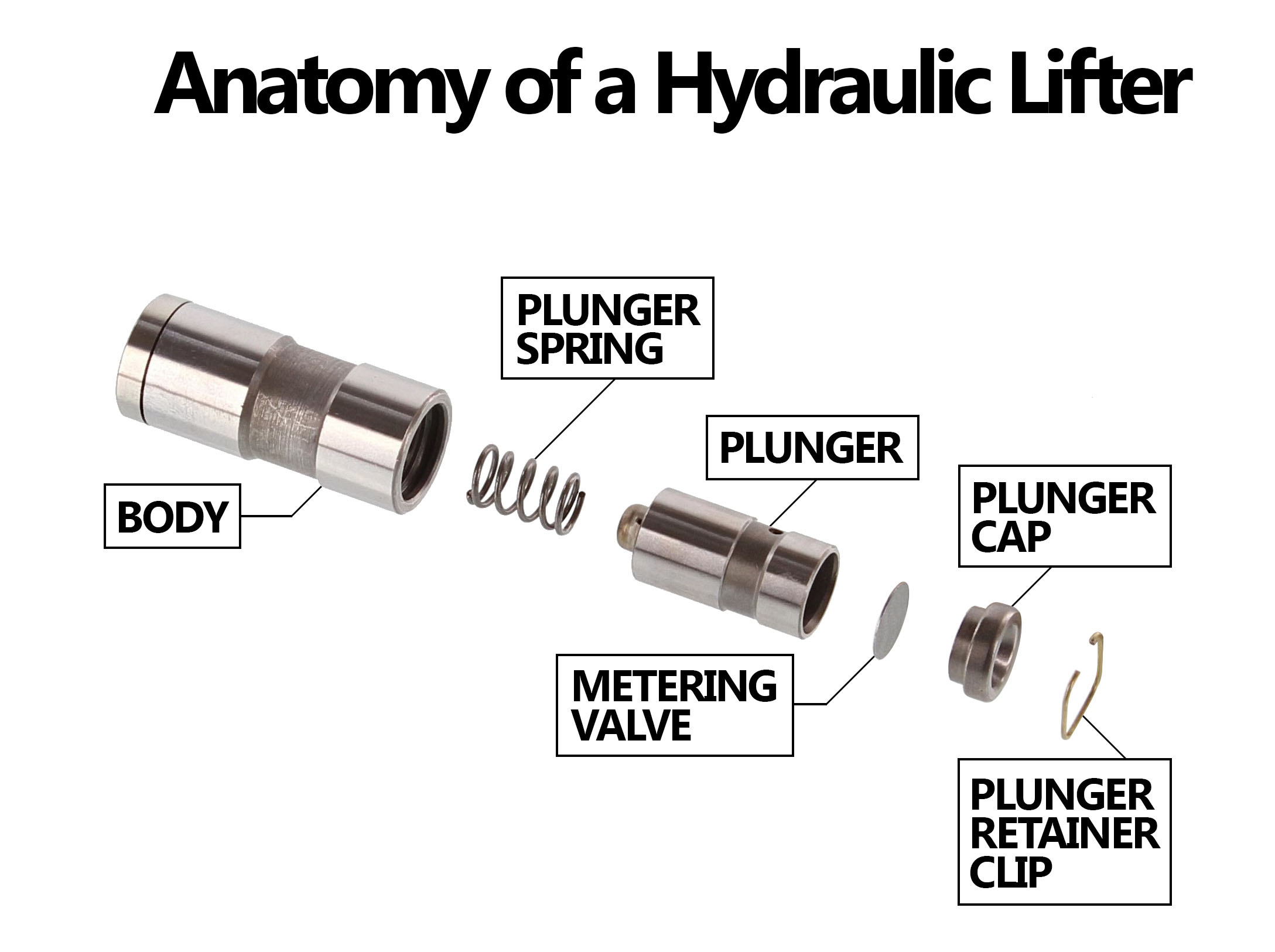 Hydraulic Vs Solid Lifters