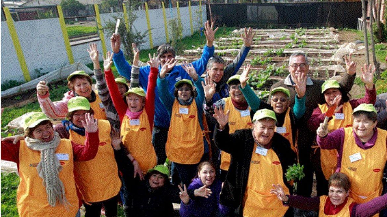 Huertas familiares comunitarias: la inclusión de los adultos mayores