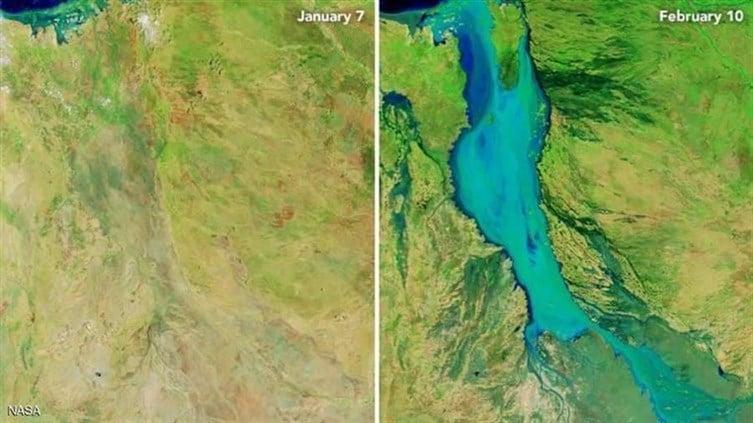 Tayyarorg أمطار جهنمية تقتل نصف مليون بقرة في أيام