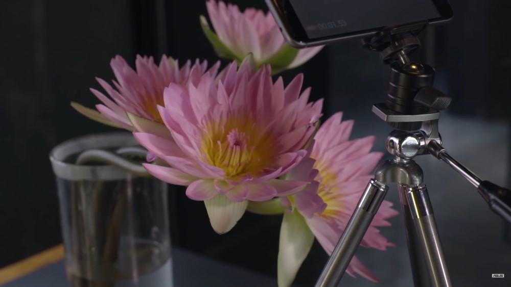 ZenHOW: Cum să faci un video time-lapse macro cu ZenFone 3 Max