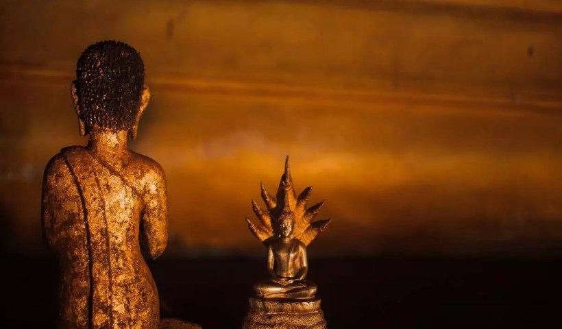 7 vastu recommended places to keep a Buddha statue at home    The Times of India