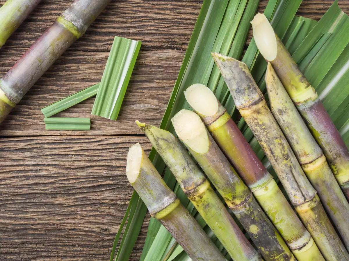 Nutritionist Reveals Sugarcane Consumption Can Improve Fertility Level And Libido