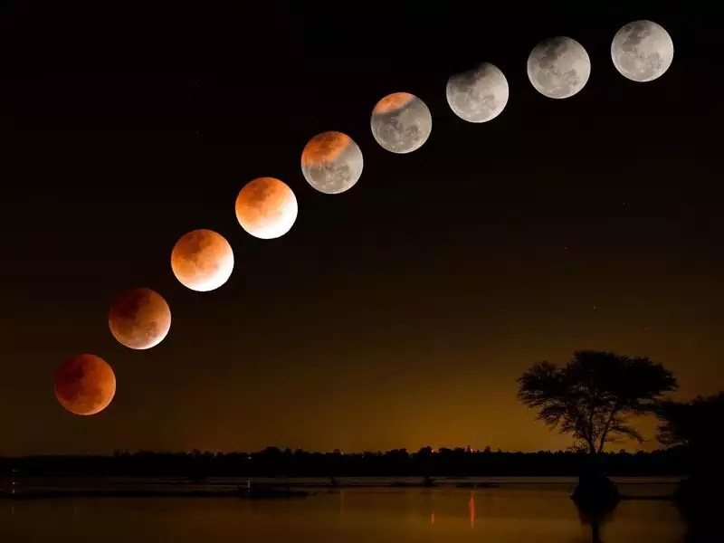 Lunar Eclipse 2021: Diet beliefs and myths associated with the celestial  event - Times of India
