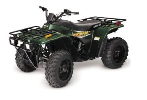 Arctic Cat ATV service manual repair 2000 250300400500