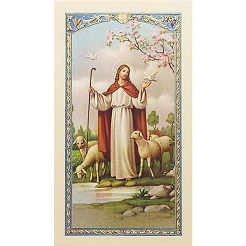 Comfort For Those Who Mourn Prayer Card The Catholic
