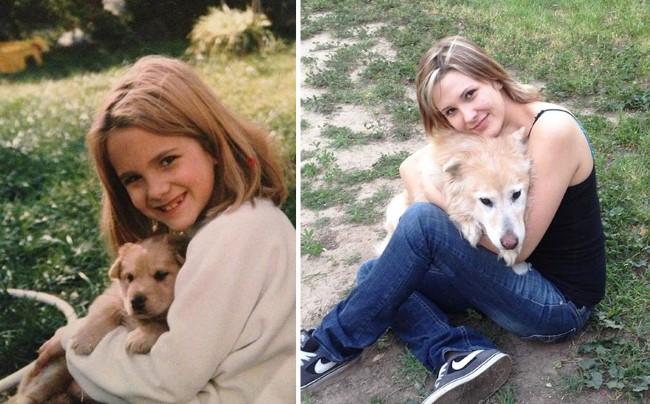 antes-e-depois-cachorros-7