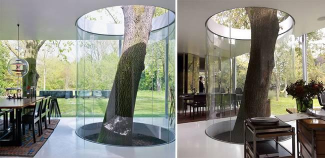 construções-que-os-arquitetos-não-arrancaram-as-árvores-12
