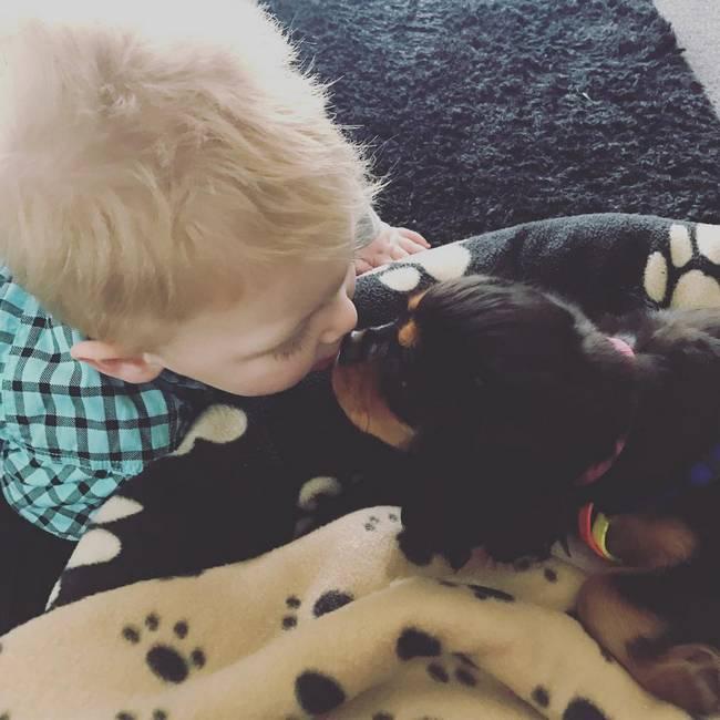 cachorro-crianca-14