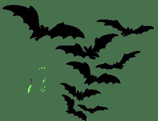 Hasil gambar untuk bats