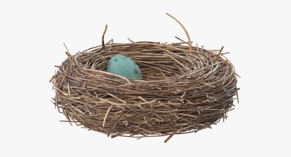 3d max bird nest 02