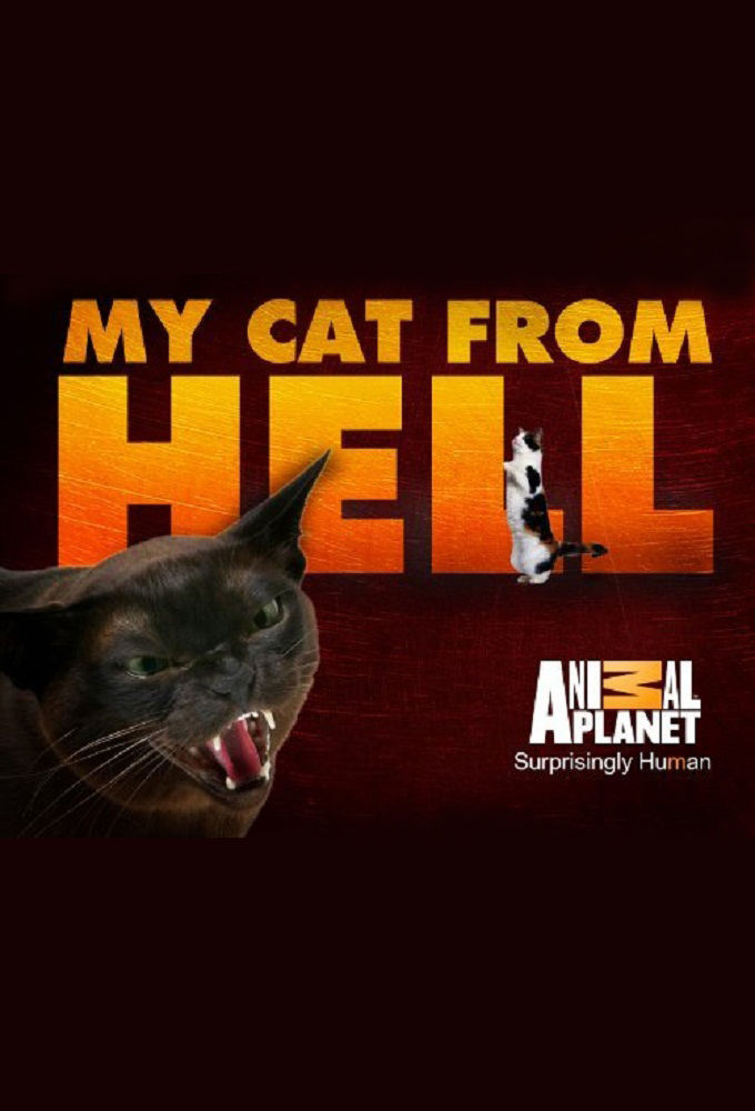 My.cat.from.hell.s09e04.feral.shop.cat.720p.anpl.web-dl.aac2.0.x264-rtn + 1080p
