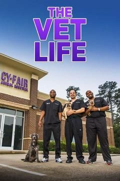 The Vet Life S02e06 California Dreamin Hdtv X264-[ny2]